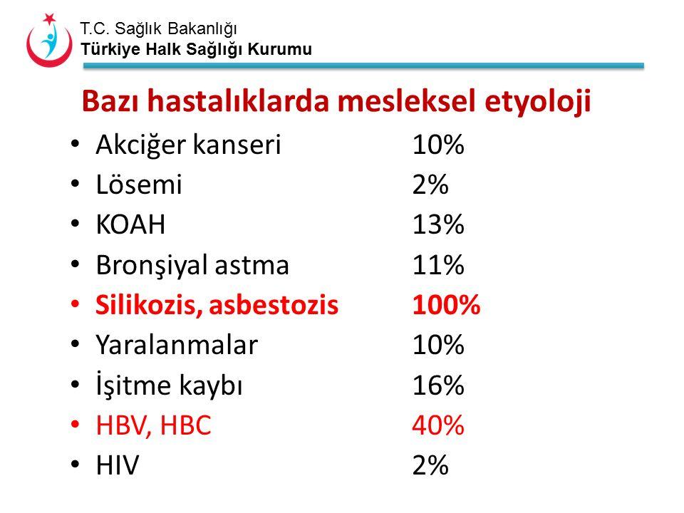 T.C. Sağlık Bakanlığı Türkiye Halk Sağlığı Kurumu Bazı hastalıklarda mesleksel etyoloji Akciğer kanseri10% Lösemi 2% KOAH13% Bronşiyal astma11% Siliko