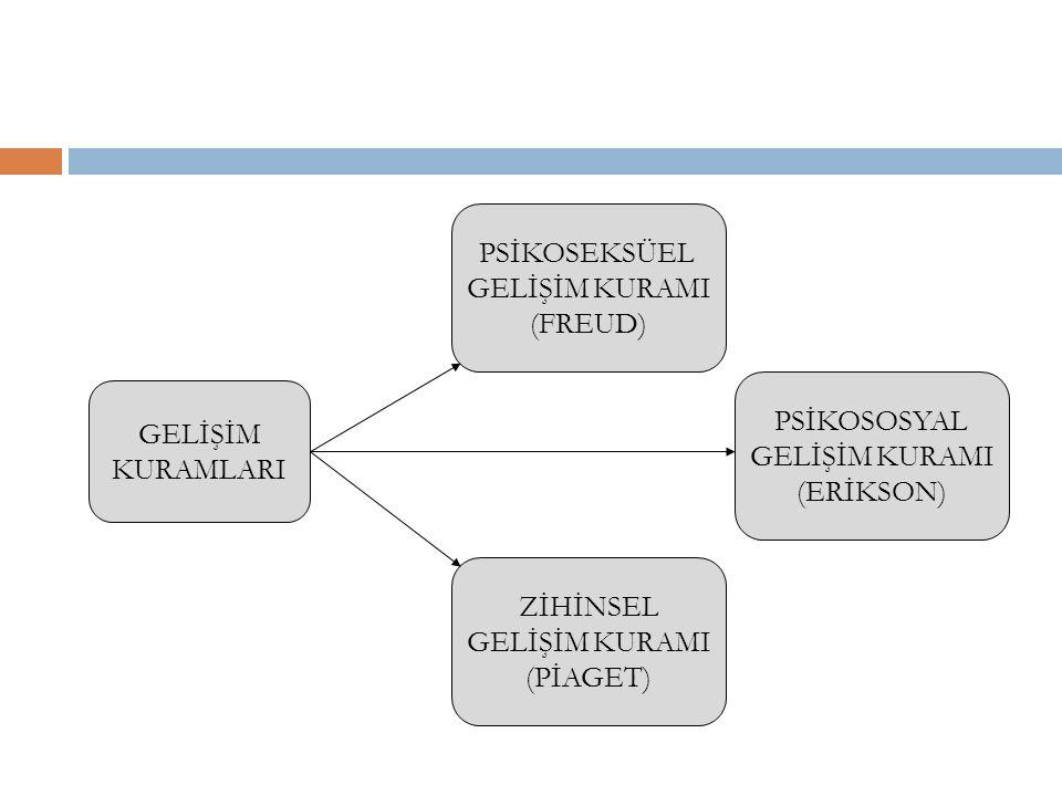 GELİŞİM KURAMLARI PSİKOSEKSÜEL GELİŞİM KURAMI (FREUD) PSİKOSOSYAL GELİŞİM KURAMI (ERİKSON) ZİHİNSEL GELİŞİM KURAMI (PİAGET)