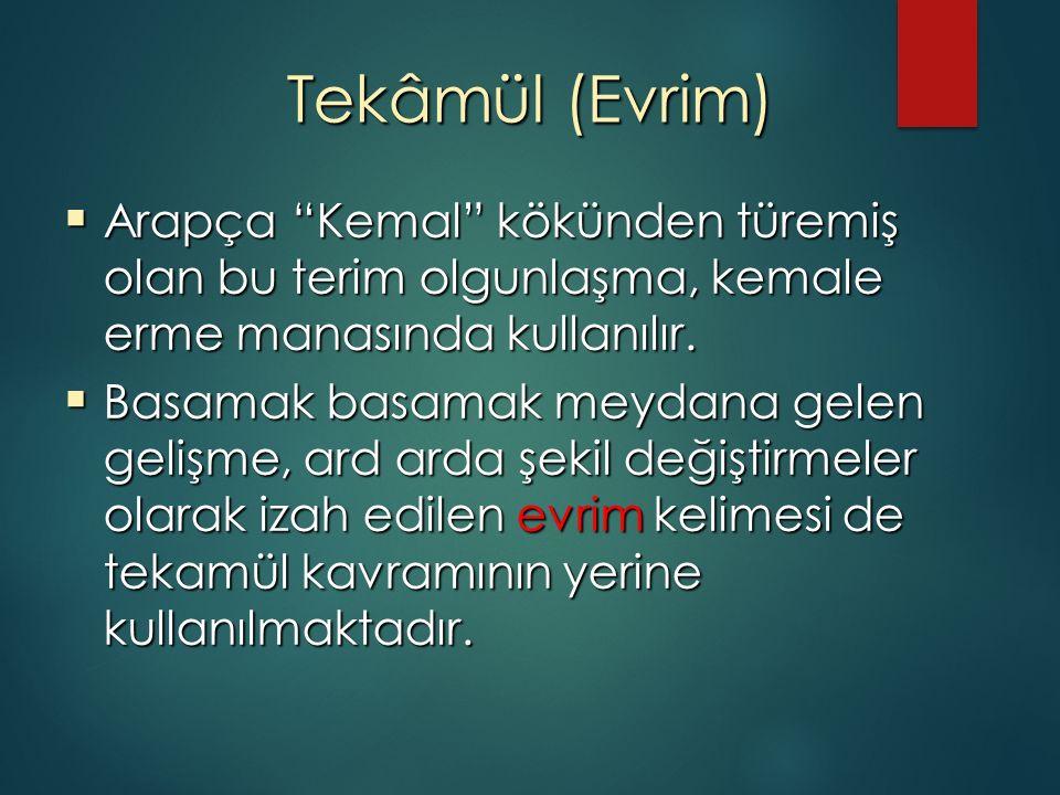 """Tekâmül (Evrim)  Arapça """"Kemal"""" kökünden türemiş olan bu terim olgunlaşma, kemale erme manasında kullanılır.  Basamak basamak meydana gelen gelişme,"""