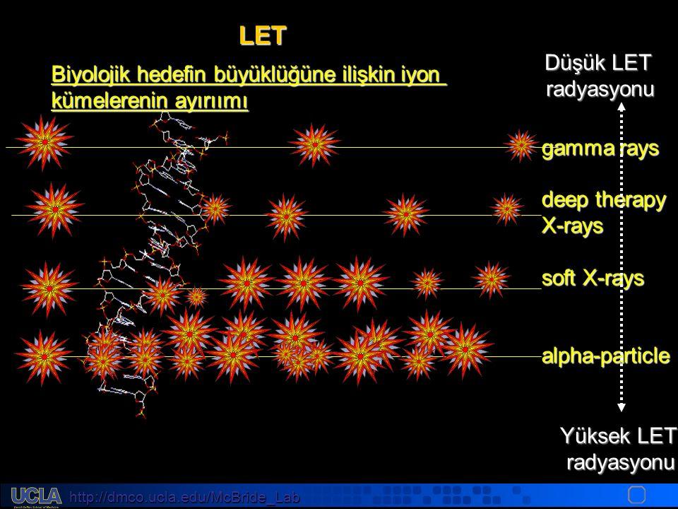 http://dmco.ucla.edu/McBride_Lab WMcB2008 gamma rays deep therapy X-rays soft X-rays alpha-particle Yüksek LET radyasyonu Düşük LET radyasyonu Biyolojik hedefin büyüklüğüne ilişkin iyon kümelerenin ayırıımı LET