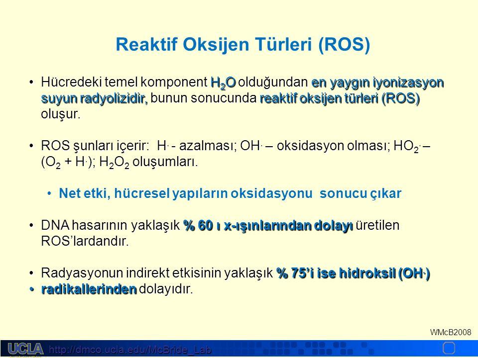 http://dmco.ucla.edu/McBride_Lab WMcB2008 Hücredeki temel komponent H 2 O olduğundan en yaygın iyonizasyon suyun radyolizidir, bunun sonucunda reaktif oksijen türleri (ROS) oluşur.Hücredeki temel komponent H 2 O olduğundan en yaygın iyonizasyon suyun radyolizidir, bunun sonucunda reaktif oksijen türleri (ROS) oluşur.