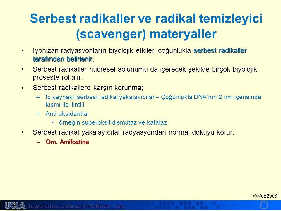 http://dmco.ucla.edu/McBride_Lab WMcB2008 Serbest radikaller ve radikal temizleyici (scavenger) materyaller İyonizan radyasyonların biyolojik etkileri çoğunlukla serbest radikaller tarafından belirlenir.İyonizan radyasyonların biyolojik etkileri çoğunlukla serbest radikaller tarafından belirlenir.