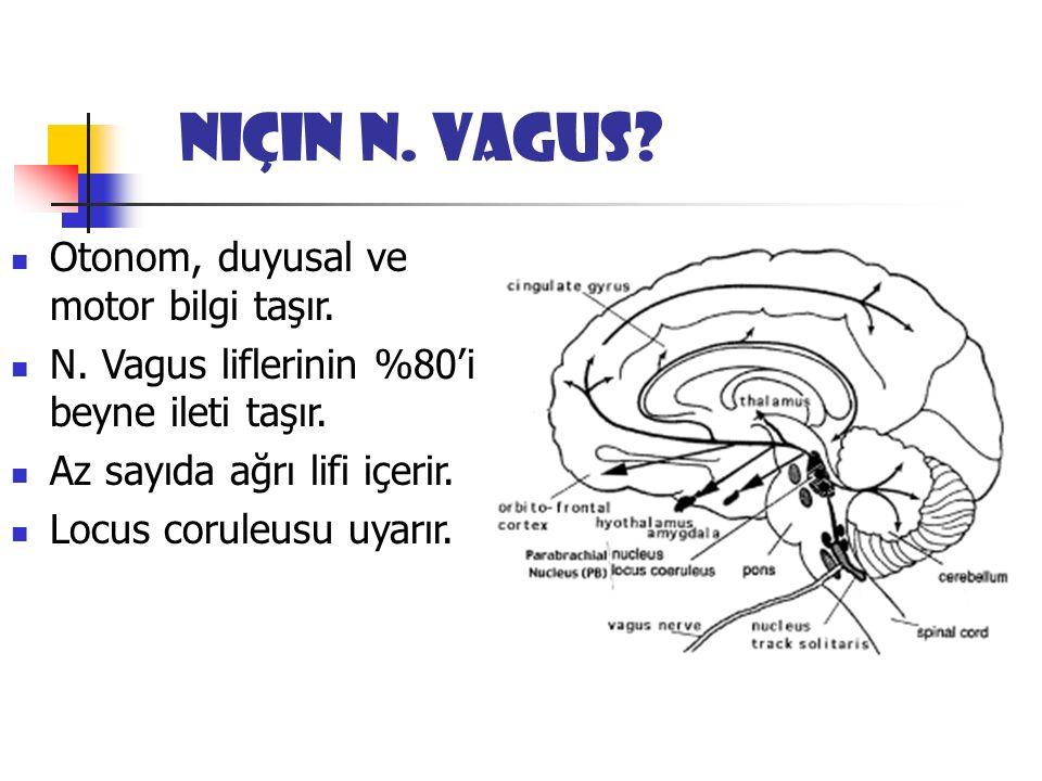 Niçin N. Vagus. Otonom, duyusal ve motor bilgi taşır.