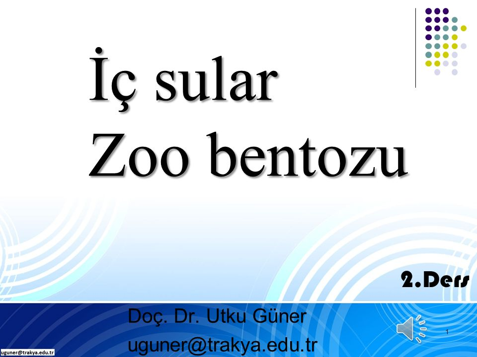 Bentik organizmaların Ekolojik rolü 32