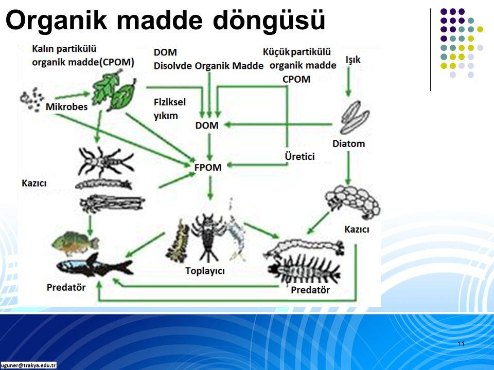 11 Organik madde döngüsü