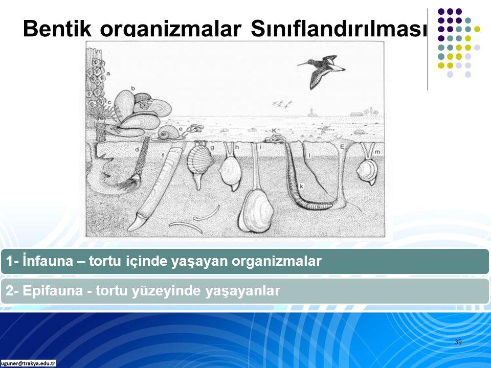 39 1- İnfauna – tortu içinde yaşayan organizmalar2- Epifauna - tortu yüzeyinde yaşayanlar Bentik organizmalar Sınıflandırılması