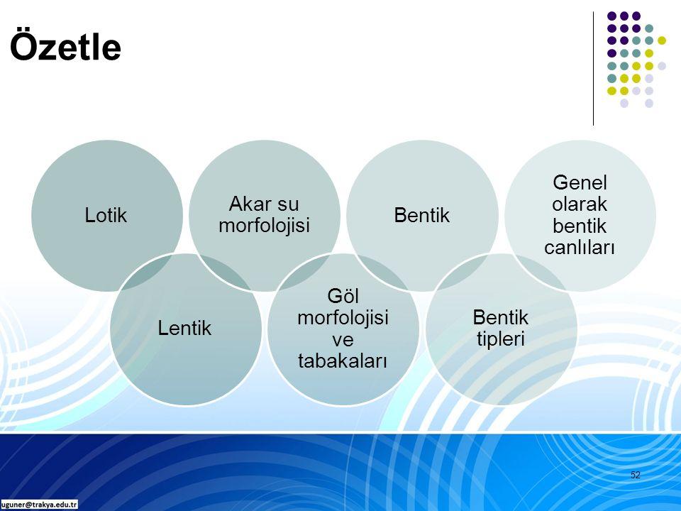 52 Özetle LotikLentik Akar su morfolojisi Göl morfolojisi ve tabakaları Bentik Bentik tipleri Genel olarak bentik canlıları