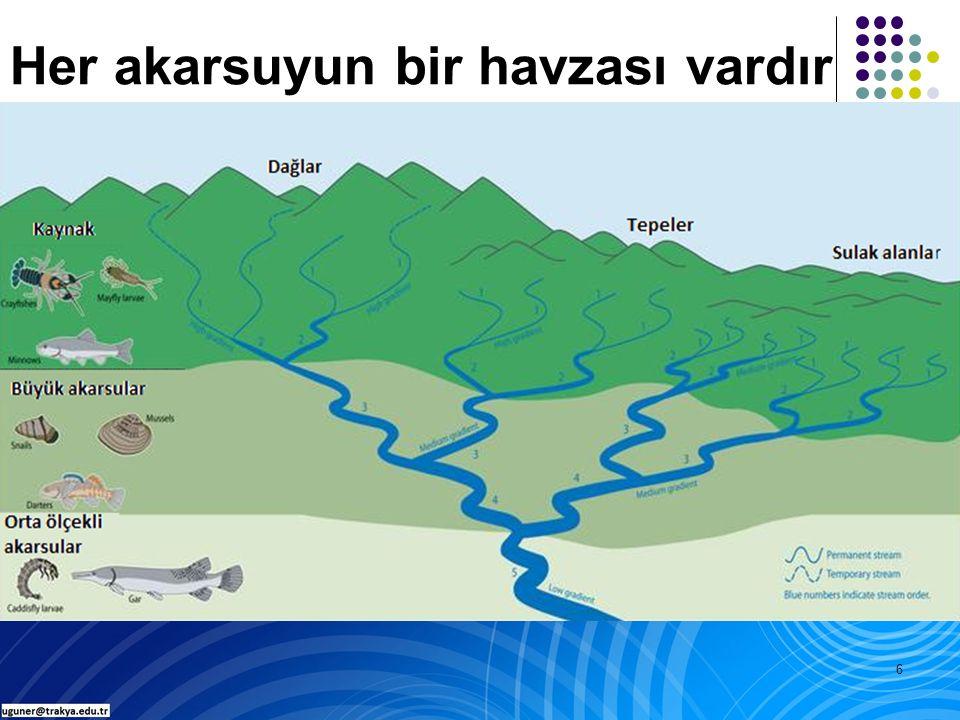7 Havzalar bir ana su kaynağına drene olan alanlar oldukları için, ana işlevlerinden birisi suyu arazide geçici olarak depolayıp ana su kaynaklarına ve oradan da havza çıkışlarına doğru taşımaktır.
