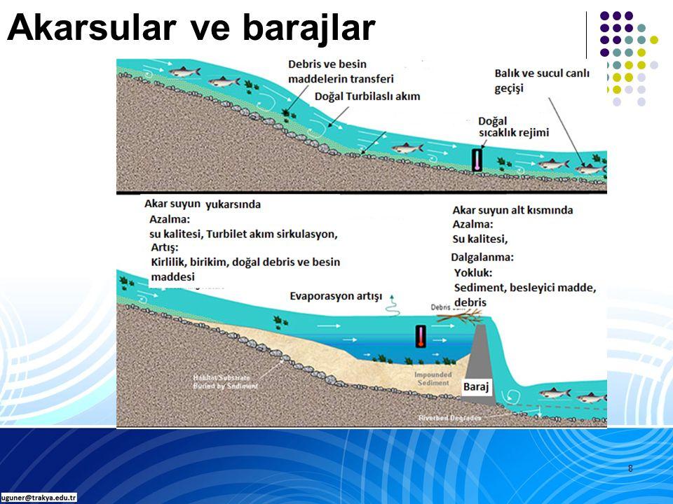 19 Derin ve kıyıları dik yamaçlı.WL oranı (drenaj alanı/göl alanı) düsük.