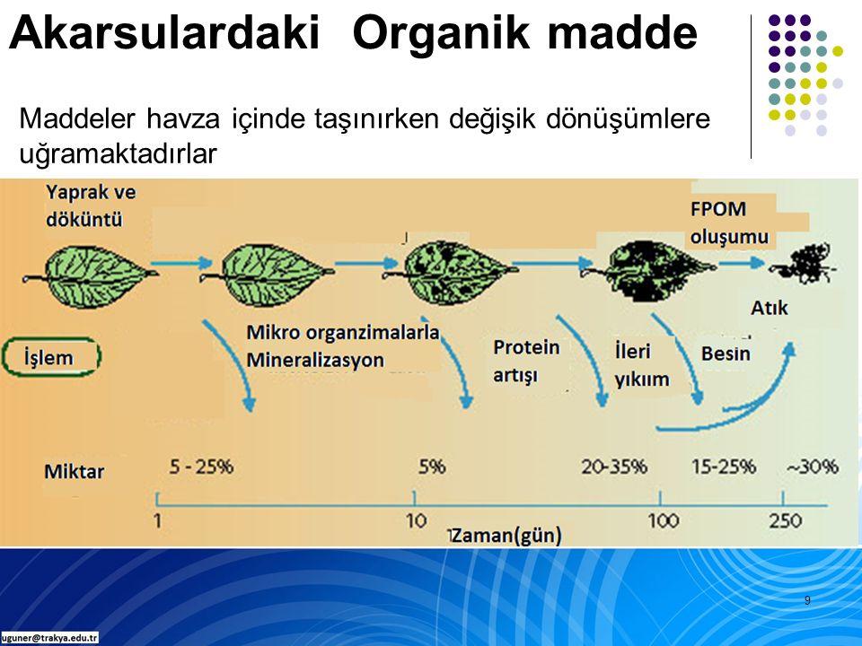 9 Akarsulardaki Organik madde Maddeler havza içinde taşınırken değişik dönüşümlere uğramaktadırlar