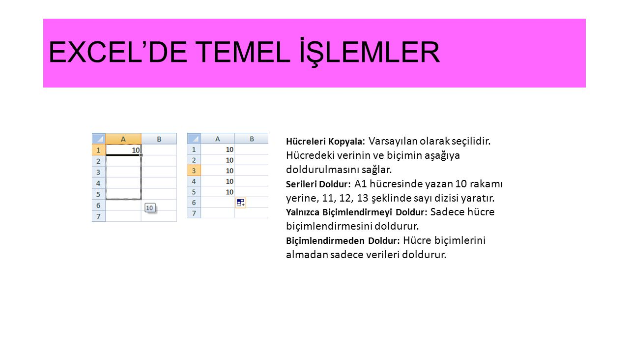 EXCEL'DE TEMEL İŞLEMLER Hücreleri Kopyala : Varsayılan olarak seçilidir. Hücredeki verinin ve biçimin aşağıya doldurulmasını sağlar. Serileri Doldur: