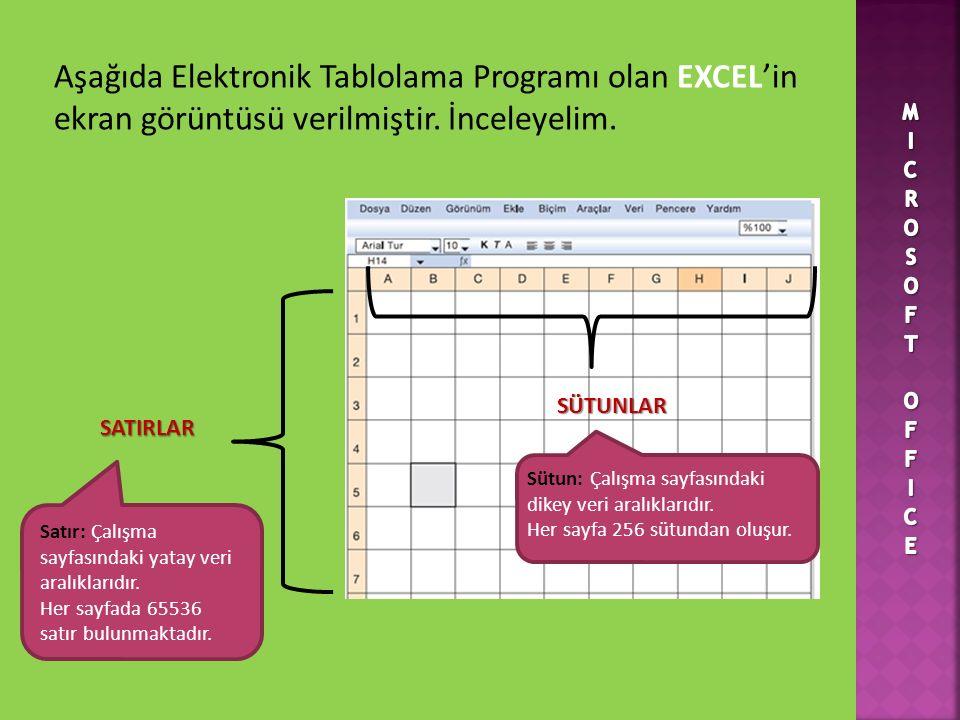 Aşağıda Elektronik Tablolama Programı olan EXCEL'in ekran görüntüsü verilmiştir.