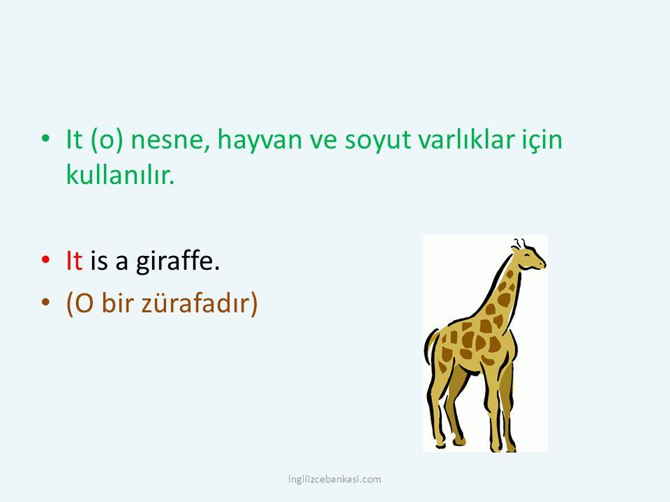 It (o) nesne, hayvan ve soyut varlıklar için kullanılır. It is a giraffe. (O bir zürafadır) ingilizcebankasi.com