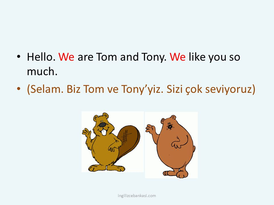 Hello. We are Tom and Tony. We like you so much. (Selam. Biz Tom ve Tony'yiz. Sizi çok seviyoruz) ingilizcebankasi.com