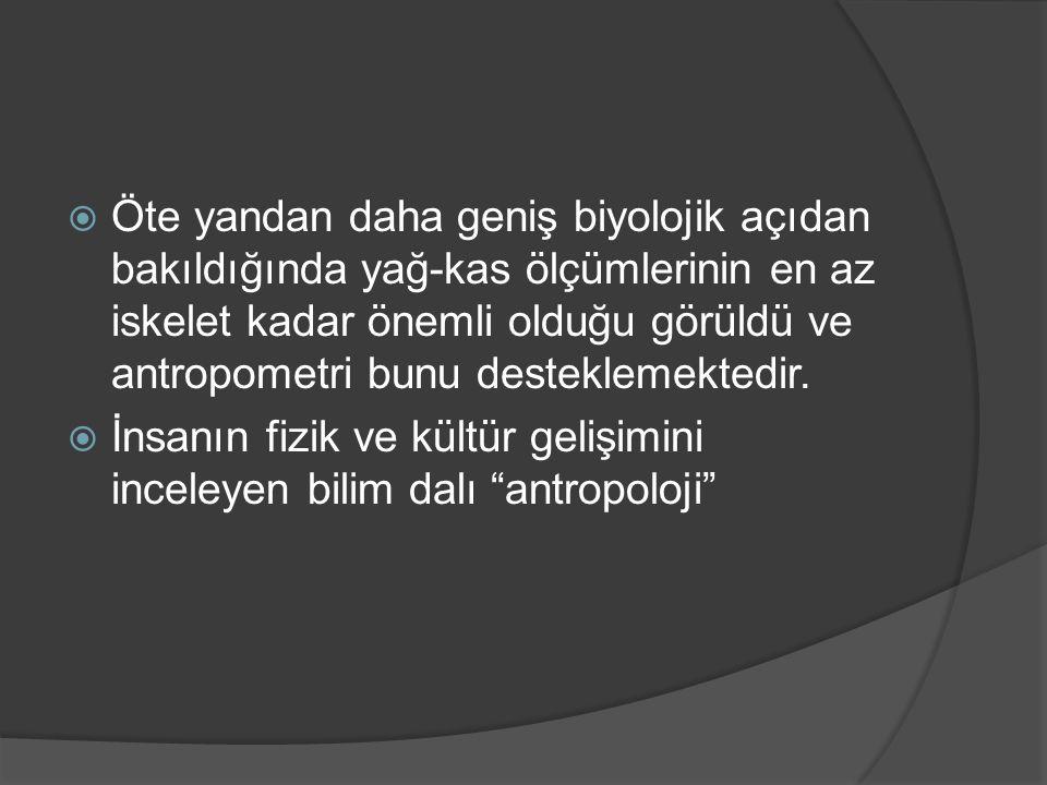 Fiziki Antropoloji Antropoloji Paleantropoloji Paleontoloji