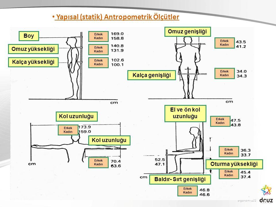 Ergonomi-201 Boy Omuz yüksekliği Kalça yüksekliği Omuz genişliği Kalça genişliği Erkek Kadın Erkek Kadın Erkek Kadın Erkek Kadın Erkek Kadın Erkek Kad