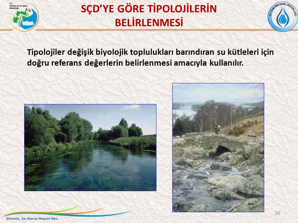 SÇD'YE GÖRE TİPOLOJİLERİN BELİRLENMESİ 36 Tipolojiler değişik biyolojik toplulukları barındıran su kütleleri için doğru referans değerlerin belirlenmesi amacıyla kullanılır.