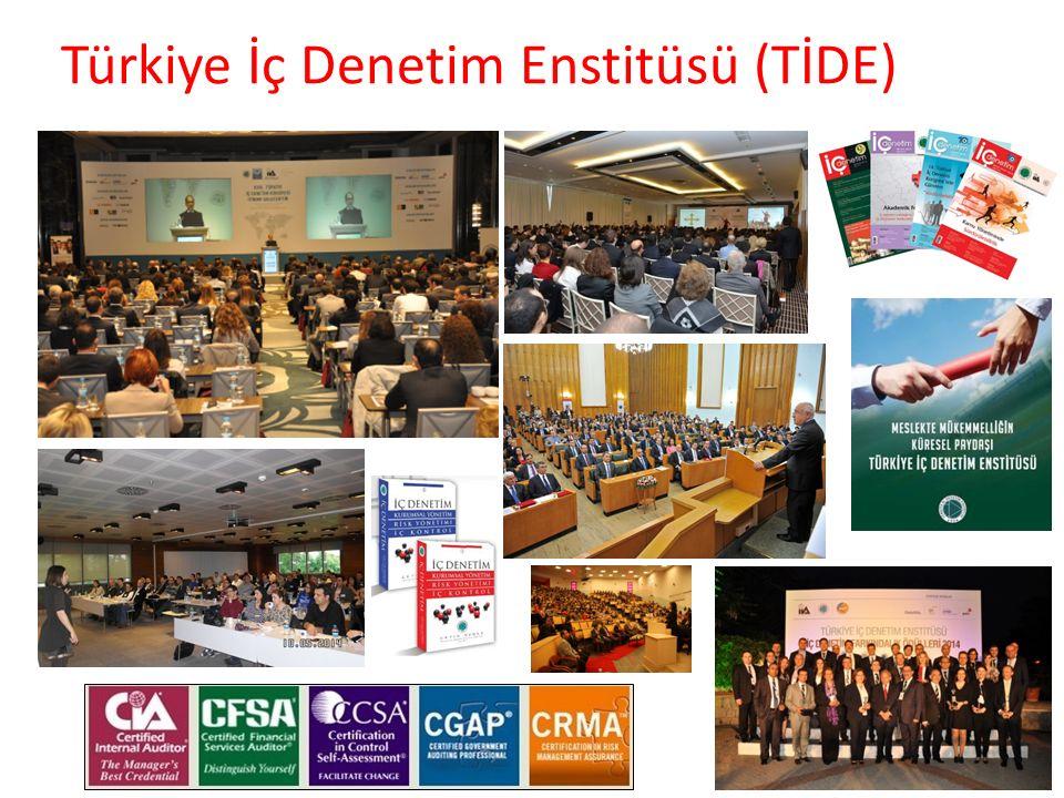 23 Türkiye İç Denetim Enstitüsü (TİDE)
