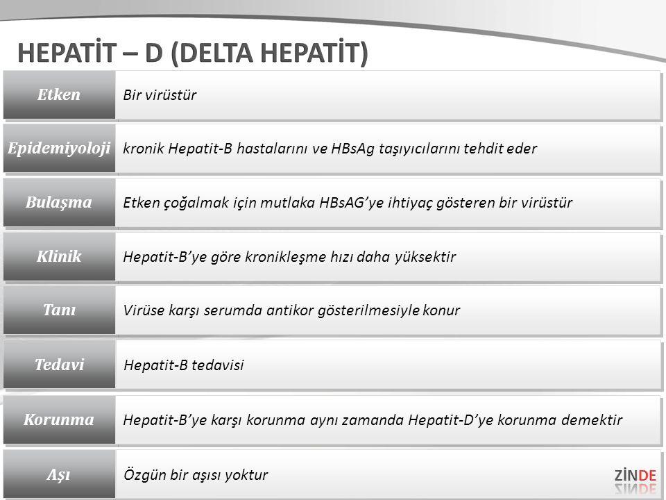 Etken Bir virüstür Epidemiyoloji kronik Hepatit-B hastalarını ve HBsAg taşıyıcılarını tehdit eder Bulaşma Etken çoğalmak için mutlaka HBsAG'ye ihtiyaç