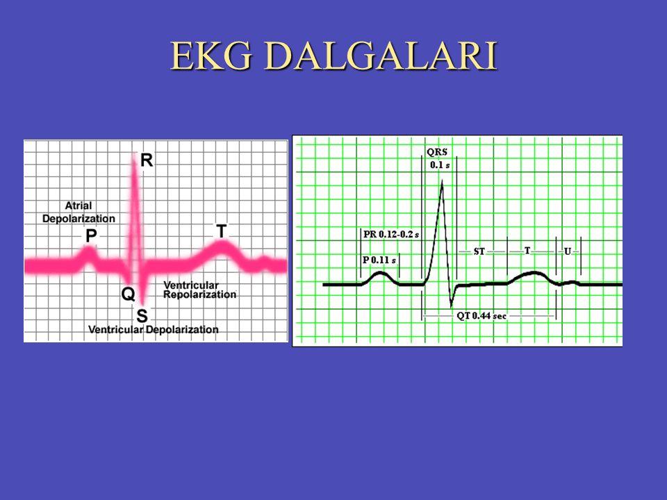 EKG DALGALARI
