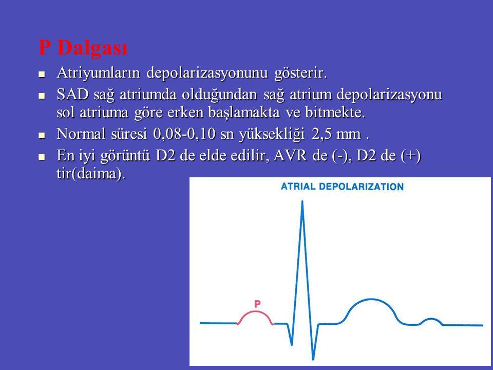 P Dalgası Atriyumların depolarizasyonunu gösterir. Atriyumların depolarizasyonunu gösterir. SAD sağ atriumda olduğundan sağ atrium depolarizasyonu sol