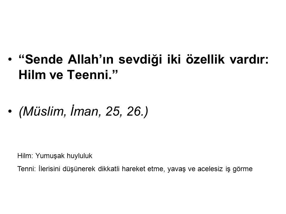 """""""Sende Allah'ın sevdiği iki özellik vardır: Hilm ve Teenni."""" (Müslim, İman, 25, 26.) Hilm: Yumuşak huyluluk Tenni: İlerisini düşünerek dikkatli hareke"""