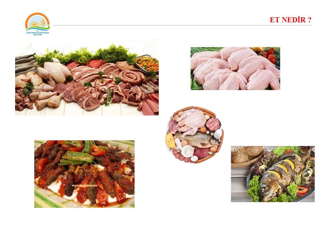 Sığır, koyun, keçi, domuz, kümes hayvanları, su ürünleri ve çeşitli av hayvanlarının iskelet kası ve iç organlarından belirli kesim, parçalama ve işleme sonucu elde edilen bir üründür.