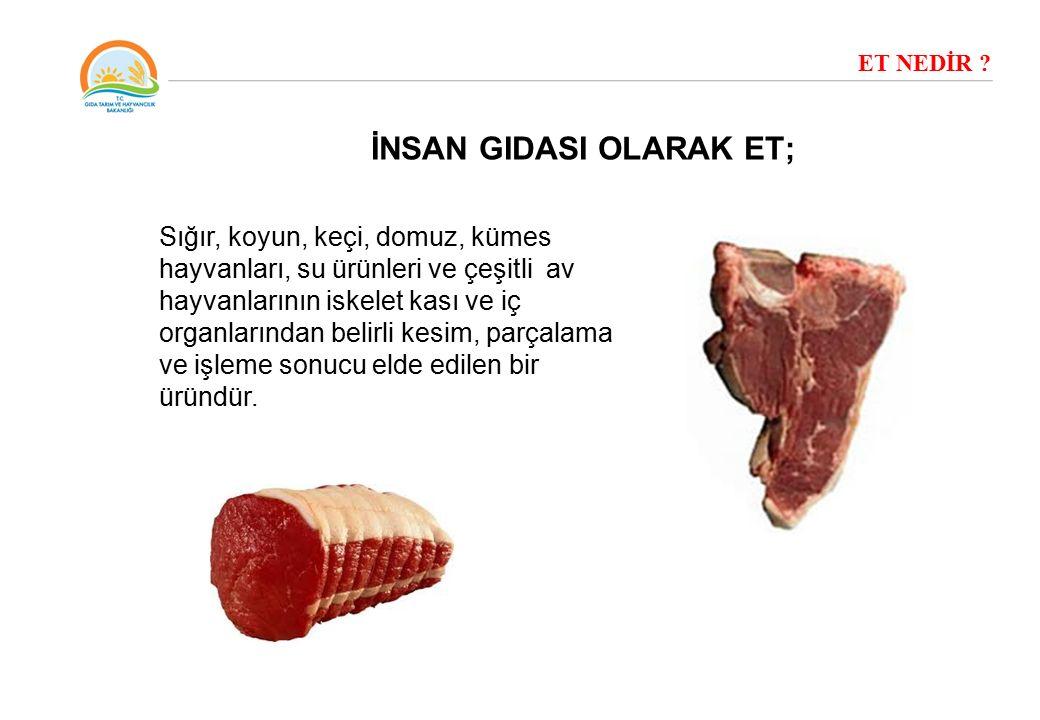 Sığır, koyun, keçi, domuz, kümes hayvanları, su ürünleri ve çeşitli av hayvanlarının iskelet kası ve iç organlarından belirli kesim, parçalama ve işle