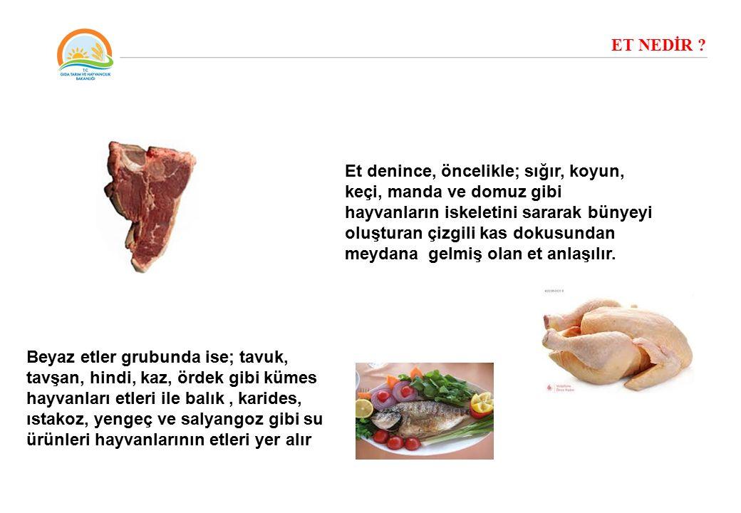 ET NEDİR ? Et denince, öncelikle; sığır, koyun, keçi, manda ve domuz gibi hayvanların iskeletini sararak bünyeyi oluşturan çizgili kas dokusundan meyd
