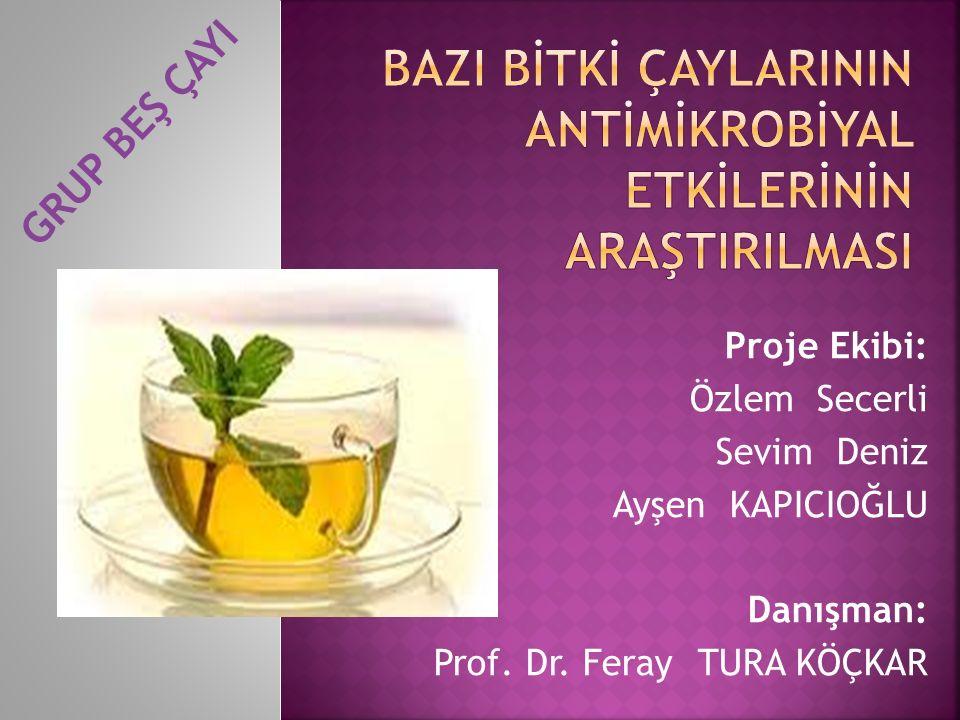 Proje Ekibi: Özlem Secerli Sevim Deniz Ayşen KAPICIOĞLU Danışman: Prof.