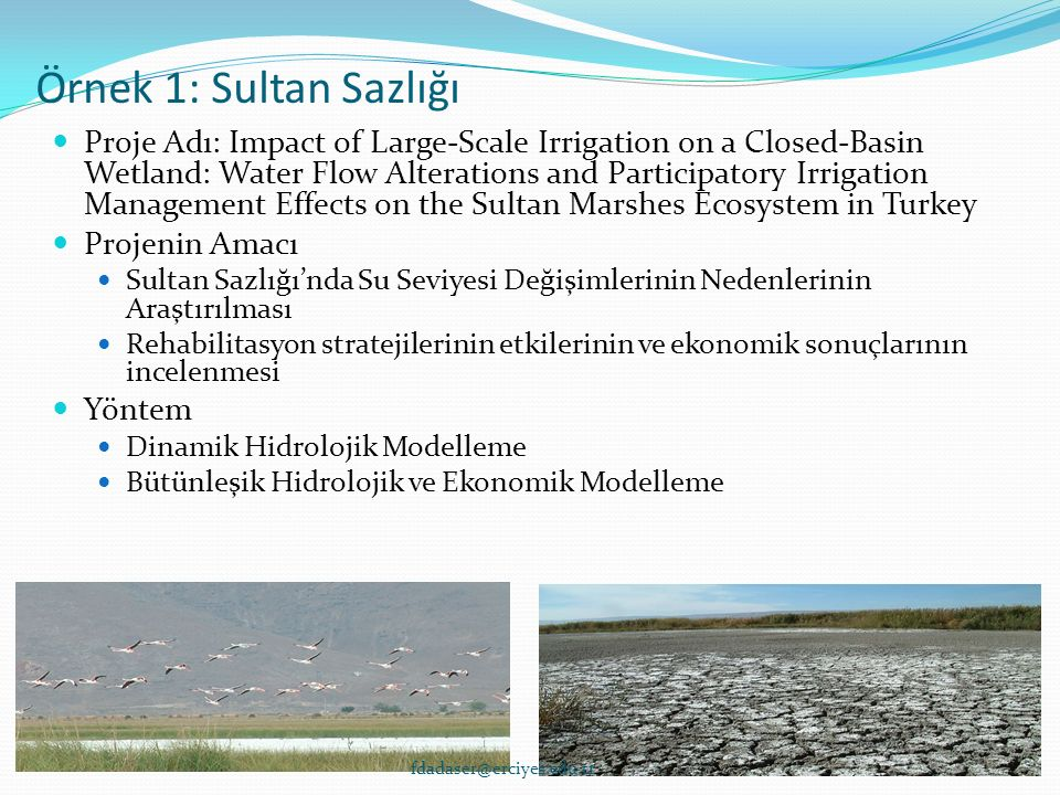 Örnek 1: Sultan Sazlığı Proje Adı: Impact of Large-Scale Irrigation on a Closed-Basin Wetland: Water Flow Alterations and Participatory Irrigation Management Effects on the Sultan Marshes Ecosystem in Turkey Projenin Amacı Sultan Sazlığı'nda Su Seviyesi Değişimlerinin Nedenlerinin Araştırılması Rehabilitasyon stratejilerinin etkilerinin ve ekonomik sonuçlarının incelenmesi Yöntem Dinamik Hidrolojik Modelleme Bütünleşik Hidrolojik ve Ekonomik Modelleme fdadaser@erciyes.edu.tr