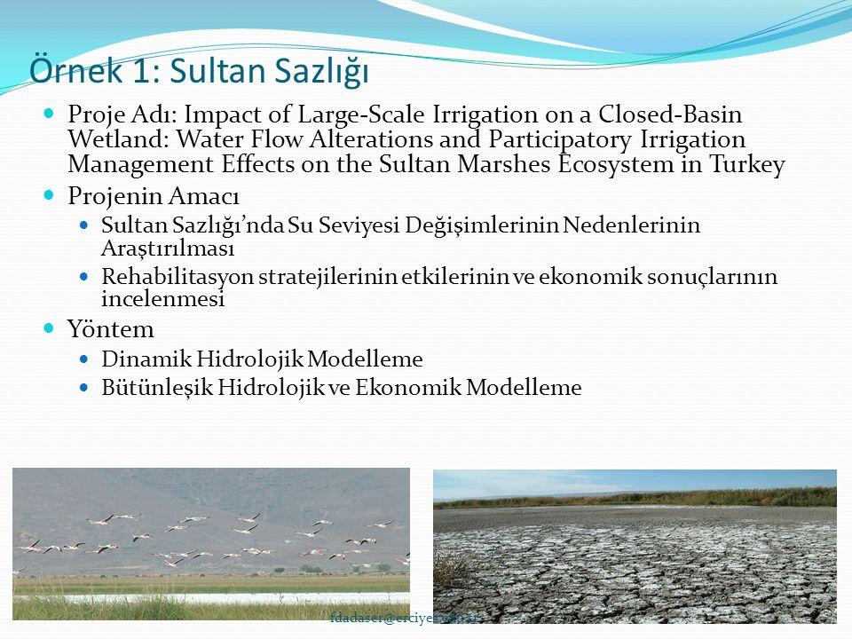 Örnek 1: Sultan Sazlığı Proje Adı: Impact of Large-Scale Irrigation on a Closed-Basin Wetland: Water Flow Alterations and Participatory Irrigation Man