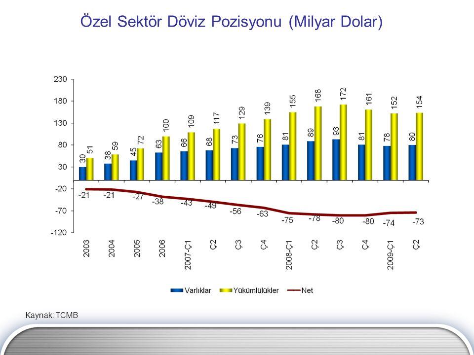 Özel Sektör Döviz Pozisyonu (Milyar Dolar) Kaynak: TCMB