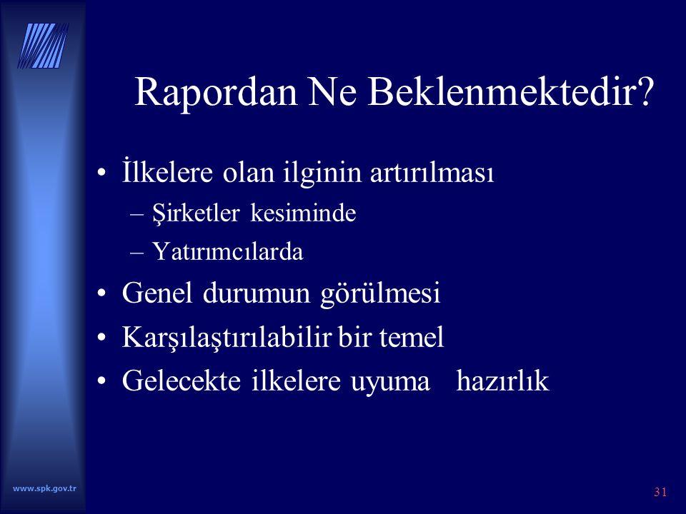 www.spk.gov.tr 31 Rapordan Ne Beklenmektedir.
