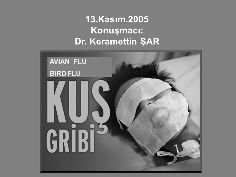 AVIAN FLU BIRD FLU 13.Kasım.2005 Konuşmacı: Dr. Keramettin ŞAR