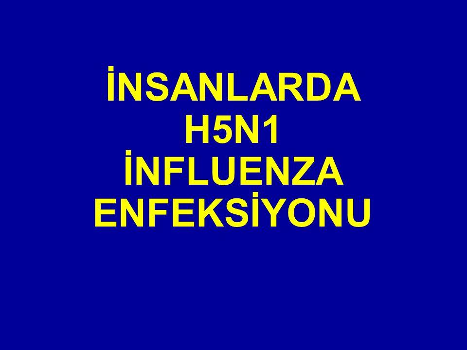 İNSANLARDA H5N1 İNFLUENZA ENFEKSİYONU