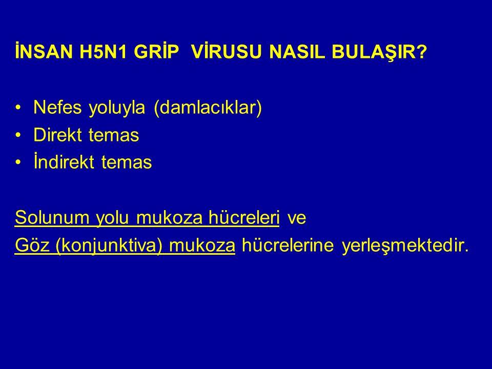 İNSAN H5N1 GRİP VİRUSU NASIL BULAŞIR.