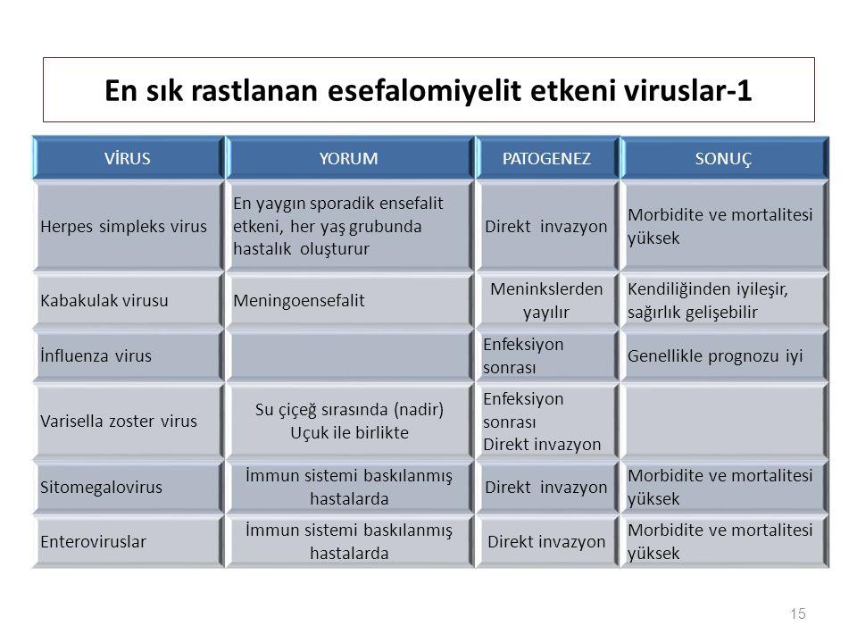 15 En sık rastlanan esefalomiyelit etkeni viruslar-1 VİRUSYORUMPATOGENEZSONUÇ Herpes simpleks virus En yaygın sporadik ensefalit etkeni, her yaş grubunda hastalık oluşturur Direkt invazyon Morbidite ve mortalitesi yüksek Kabakulak virusuMeningoensefalit Meninkslerden yayılır Kendiliğinden iyileşir, sağırlık gelişebilir İnfluenza virus Enfeksiyon sonrası Genellikle prognozu iyi Varisella zoster virus Su çiçeğ sırasında (nadir) Uçuk ile birlikte Enfeksiyon sonrası Direkt invazyon Sitomegalovirus İmmun sistemi baskılanmış hastalarda Direkt invazyon Morbidite ve mortalitesi yüksek Enteroviruslar İmmun sistemi baskılanmış hastalarda Direkt invazyon Morbidite ve mortalitesi yüksek