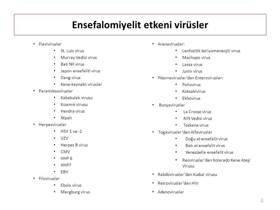 Ensefalomiyelit etkeni virüsler Flaviviruslar St.