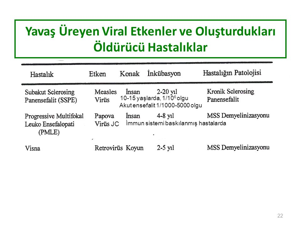 Yavaş Üreyen Viral Etkenler ve Oluşturdukları Öldürücü Hastalıklar 22 JC İmmun sistemi baskılanmış hastalarda 10-15 yaşlarda, 1/10 6 olgu Akut ensefalit 1/1000-5000 olgu