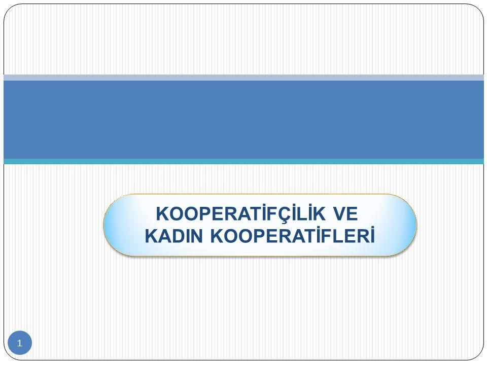 22 İpekyolu Kadın Kooperatifi (Mardin) Kooperatif 3–6 yaş çocuklara yönelik okul öncesi eğitim, kadınlara yönelik okuma-yazma hizmetleri vermekte ve sabun üretimi yapmaktadır.