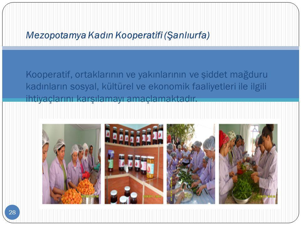 28 Mezopotamya Kadın Kooperatifi (Şanlıurfa) Kooperatif, ortaklarının ve yakınlarının ve şiddet mağduru kadınların sosyal, kültürel ve ekonomik faaliy