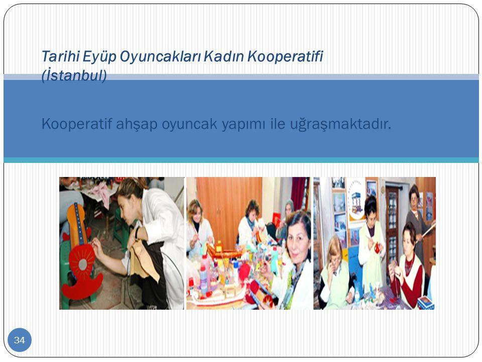 34 Tarihi Eyüp Oyuncakları Kadın Kooperatifi (İstanbul) Kooperatif ahşap oyuncak yapımı ile uğraşmaktadır.
