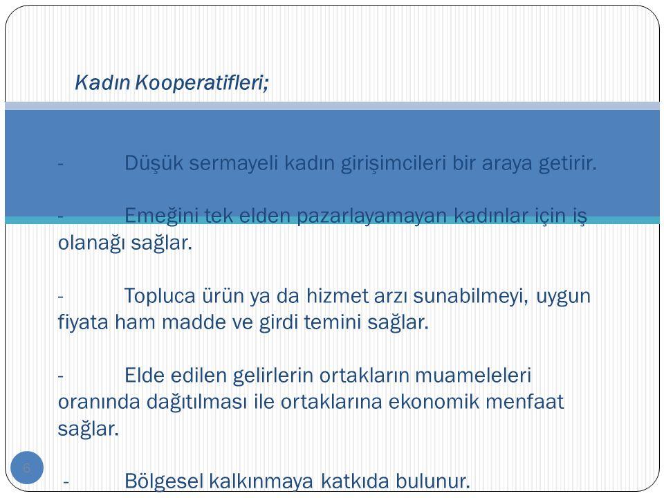 17 Beyoğlu Kadın Kooperatifi (İstanbul) 2005 yılında kurulan kooperatifte bugün hediyelik eşyalar üretilmektedir.