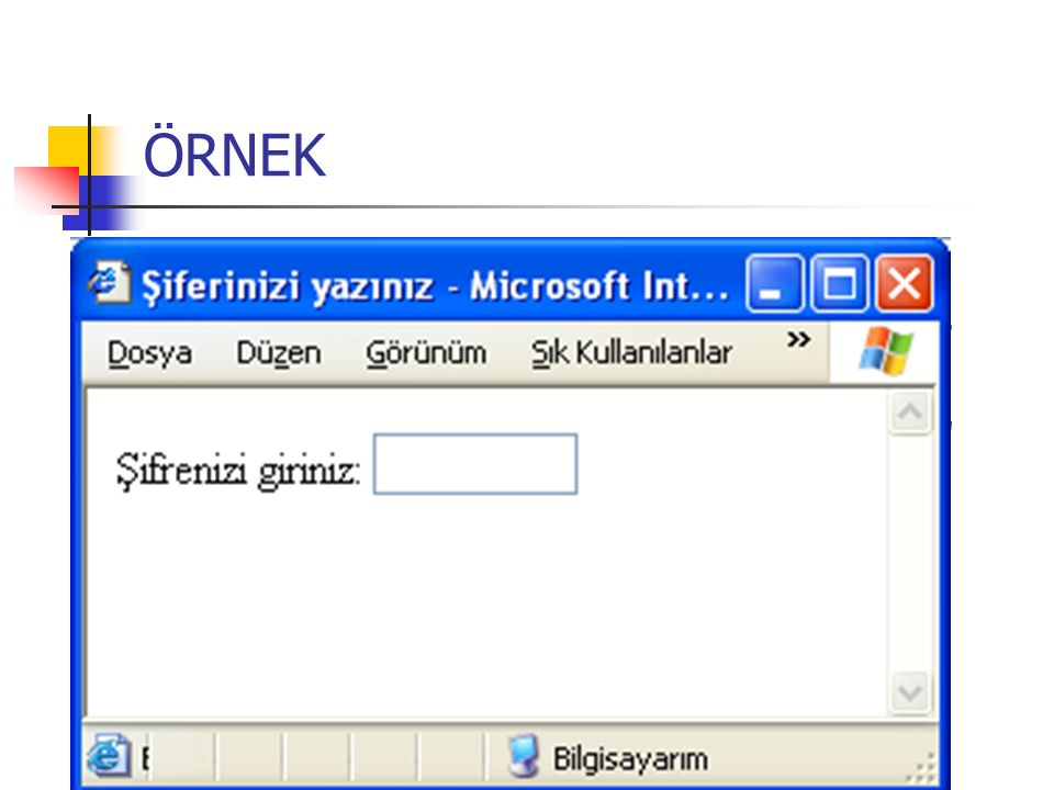 ÖRNEK TYPE=password (şifre kutuları): Girilen karakterler gizlenir ( * karakteri görülür).