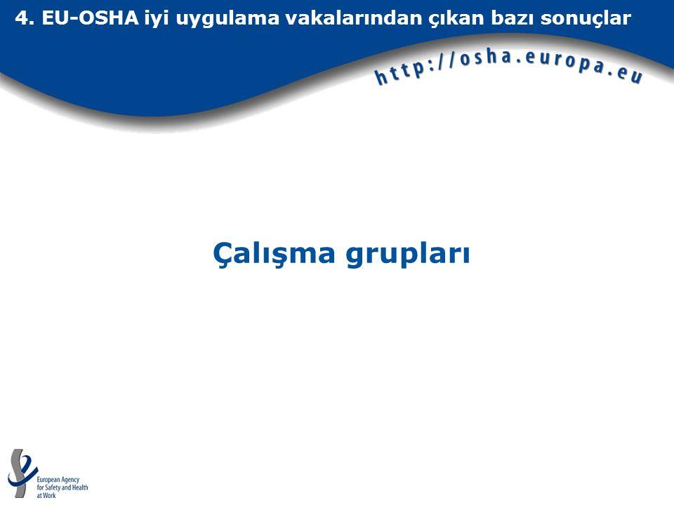4. EU-OSHA iyi uygulama vakalarından çıkan bazı sonuçlar Çalışma grupları
