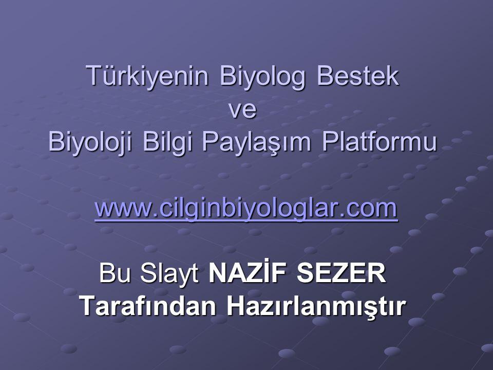 Türkiyenin Biyolog Bestek ve Biyoloji Bilgi Paylaşım Platformu www.cilginbiyologlar.com Bu Slayt NAZİF SEZER Tarafından Hazırlanmıştır www.cilginbiyol