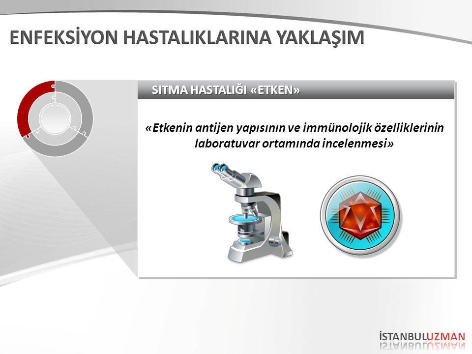 SITMA HASTALIĞI «ETKEN» «Etkenin antijen yapısının ve immünolojik özelliklerinin laboratuvar ortamında incelenmesi»