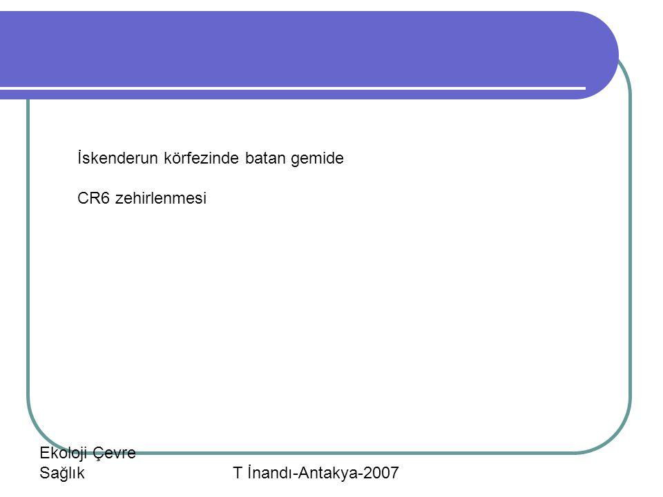 Ekoloji Çevre Sağlık T İnandı-Antakya-2007 İskenderun körfezinde batan gemide CR6 zehirlenmesi