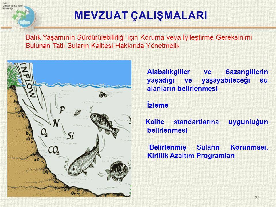 24 Balık Yaşamının Sürdürülebilirliği için Koruma veya İyileştirme Gereksinimi Bulunan Tatlı Suların Kalitesi Hakkında Yönetmelik Alabalıkgiller ve Sazangillerin yaşadığı ve yaşayabileceği su alanların belirlenmesi İzleme Kalite standartlarına uygunluğun belirlenmesi Belirlenmiş Suların Korunması, Kirlilik Azaltım Programları